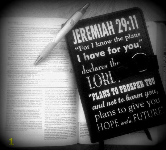 Jeremiah 1.20